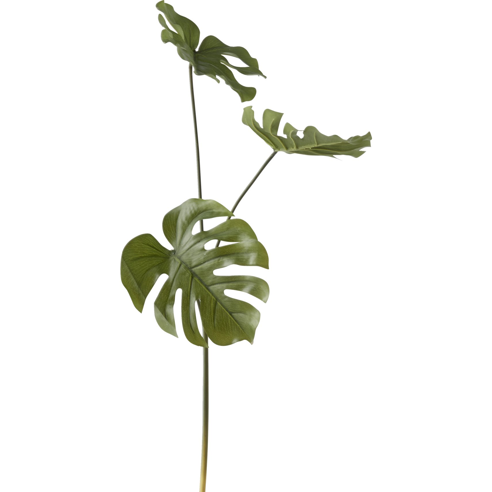 Monstera Kunstig plante - Grøn monstera