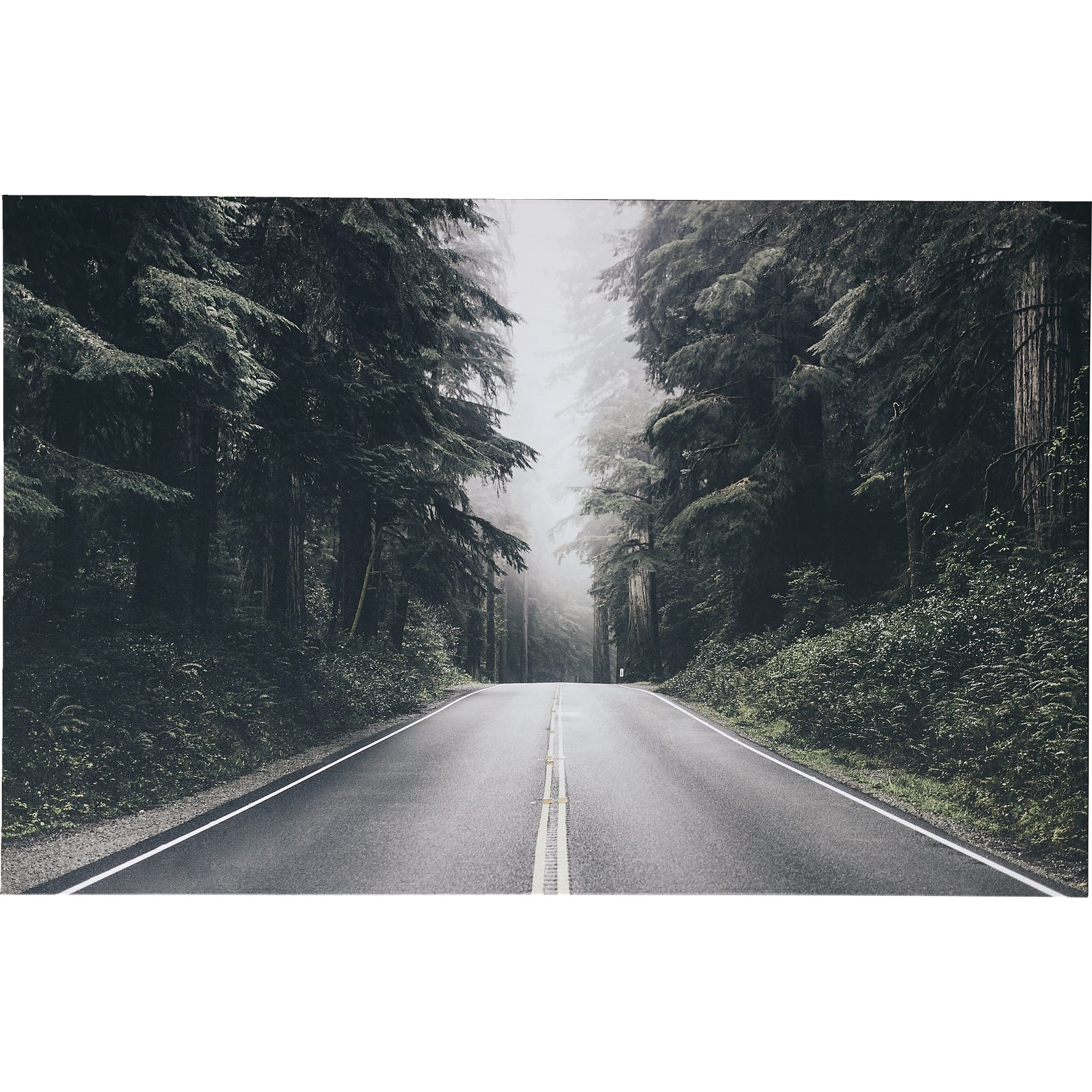 Forest Road Fotoprint -